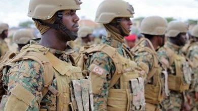 Photo of Somali army kills 7 al-Shabab militants in southern region