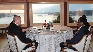 Photo of Erdoğan, Somali counterpart Mohamed meet in Istanbul