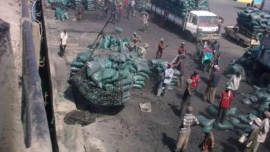 Photo of Charcoal Still Smuggled From KDF-Controlled Somalia Zones