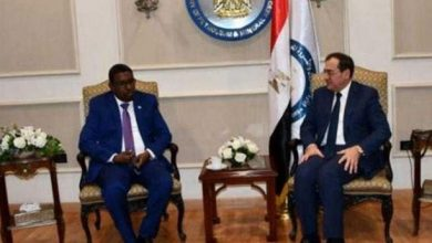 Photo of Somalia Seeks Egypt's Experience in Developing Natural Resources