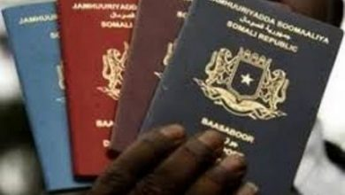 Photo of Immigration Authority Apologizes For Delays In Passport Issuance