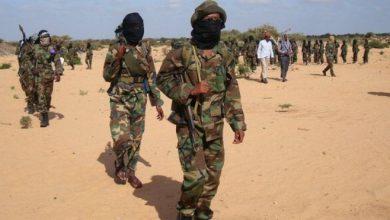 Photo of Three senior al-Shabab militants arrested in southern Somalia