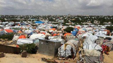 Photo of IOM Addresses Protection Needs of Internally Displaced Somalis