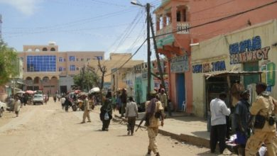 Photo of Southwest State MP's Residence In Baidoa With Grenade
