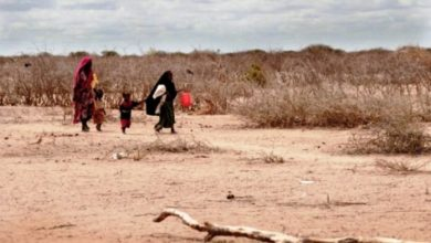 Photo of Severe Water Shortage Reported In Gedo Region