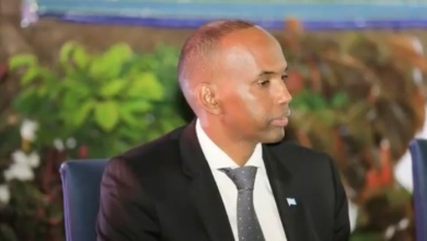 Photo of Somali PM Names Committee To Protest Public Properties
