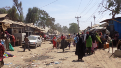 Photo of Somali Forces Conduct Security Operation In Afgoye, Nab Suspects