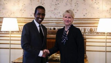 Photo of Somalia's Foreign Minister Meets With His Swedish Counterpart