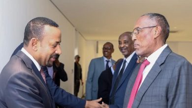 Photo of PM Abiy Holds Talks With President Of Somaliland Administration