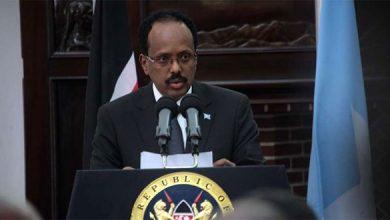 Photo of Somalia seeks Nairobi-based currency expert in fake money purge