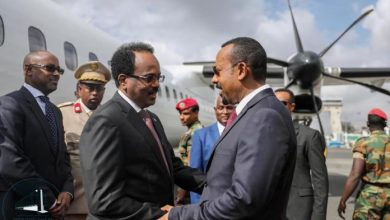 Photo of Somali President Arrives In Ethiopia For Official Visit