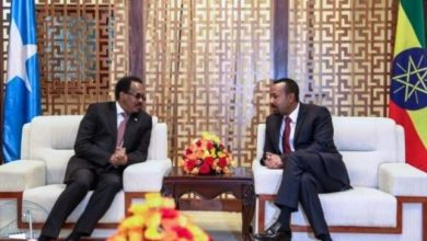 Photo of Ethiopian, Somali Leaders Hold Bilateral Discussion In Addis Ababa