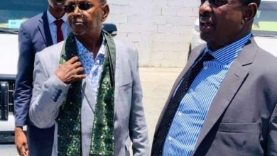 Photo of Great Somali Singers Back Home After 30 Years In Abroad