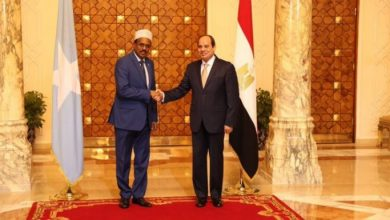 Photo of Egypt, Somalia Bolster Security Coordination Amid Suez Canal Fears