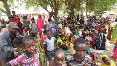 Photo of Kenya, Ethiopia move to end inter-clan wars