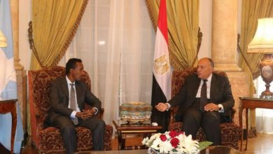 Photo of Somalia And Egypt Sign Deal To Boost Trade