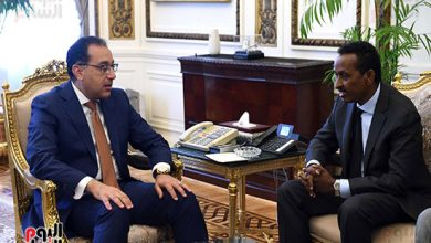 Photo of Somalia FM Meets With Egypt's Prime Minister In Cairo