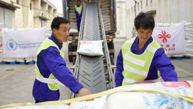 Photo of China Ships Tons Of Food To Somalia To Avert Food Security