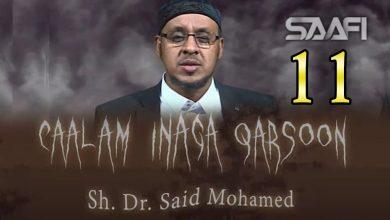 Photo of 11 Caalam inaga qarsoon (Jinka & shayaadhiinta) Sheekh Siciid Maxamed Faarax