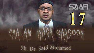 Photo of 17 Caalam inaga qarsoon (Jinka & shayaadhiinta) Sheekh Siciid Maxamed Faarax