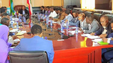 Photo of Somali region unilaterally withdraws from 2014 agreement transfering three kebeles to Afar region, beefs up security