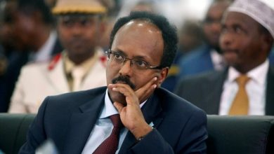 Photo of Somali president asserts importance of ties with Egypt