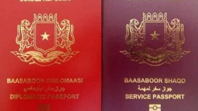 Photo of Netherlands Joins EU Countries Recognizing Somali Passport
