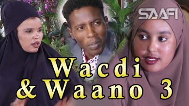 Musalsalka Wacdi & Waano Part 3