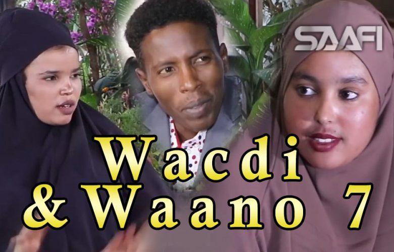 Musalsalka Wacdi & Waano Part 7