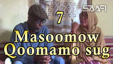 Part 7 Masoomow qoomamo sug Sheeko Gaaban