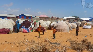 Photo of Displaced families safe from eviction after getting their own land in Baidoa