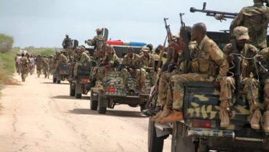 Photo of Somali Army Kills Militants During Operation, Says Commander