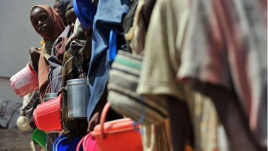 Photo of Millions Face Starvation In Drought-Hit Somalia