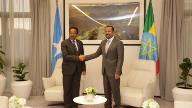 Photo of Ethiopia PM And Somali President Confer In Addis Ababa