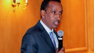 Photo of Somalia's foreign minister says diaspora playing key role in rebuilding country