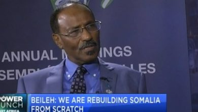Photo of Abdirahman Beileh on what Somalia is doing to attract investors