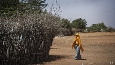 Photo of Kenya Retakes Control of Two Emptied Refugee Camps