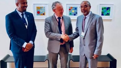 Photo of Sweden, Switzerland To Help Somaliland Explore Economic Capacity