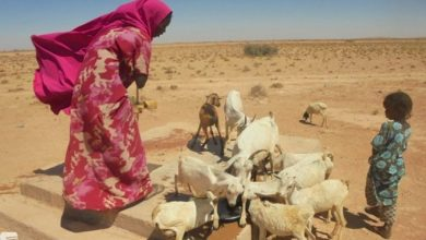 Photo of Debt collectors chase Somali pastoralists for cash borrowed to survive the drought