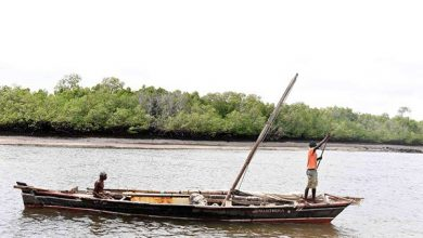 Photo of Kenya Bans Fishing Close To Somalia Border