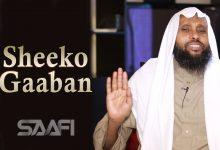 SHEEKO GAABAN Malagii taajirka soo booqday Saafi Films