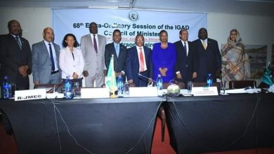Photo of Somali Foreign Minister Attends IGAD Summit In Addis Ababa