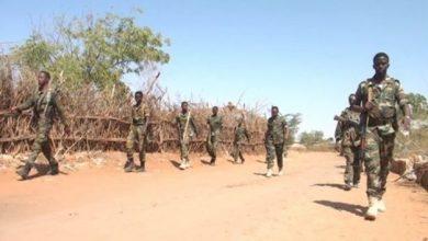 Photo of Somali Army Kills Three Suspected Al-Shabaab Members In Operation