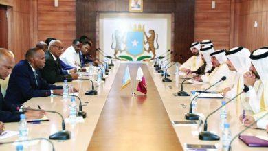 Photo of FM meets Somali Prime Minister