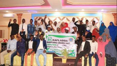 Photo of Somali Greenpeace Association launches tree planting project