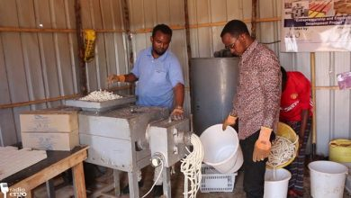 Photo of Somalia's first youth start-up soap factory opens in Kismayo