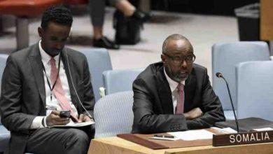 Photo of Somalia Welcomes UNSC Decision To Reject Kenya's Bid To Blacklist Al-Shabab