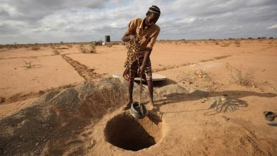 Photo of UN warns two million people in Somalia at risk of starvation