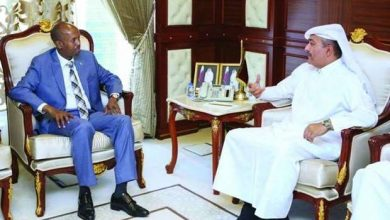 Photo of Labour Minister meets Somali counterpart