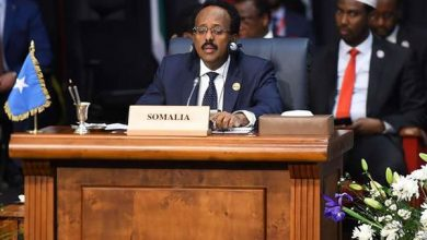 Photo of Key decisions evoke doubt on Somalia's anti-Shabaab drive